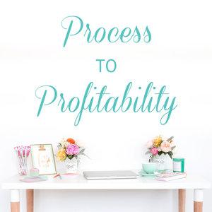Process To Profitability