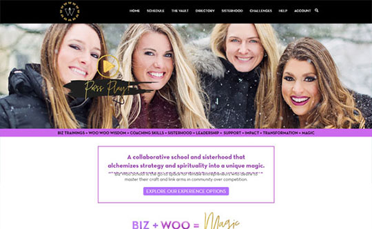 Biz Woo School - Custom WordPress Development