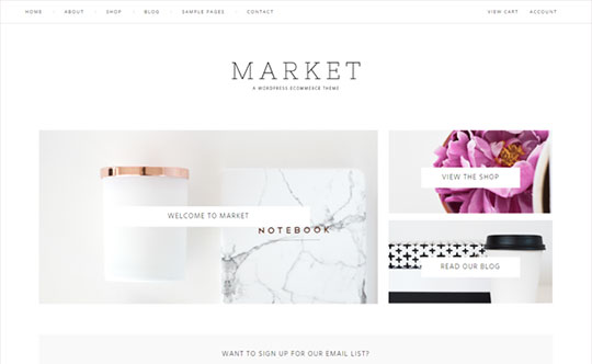 Market - WordPress Theme Development