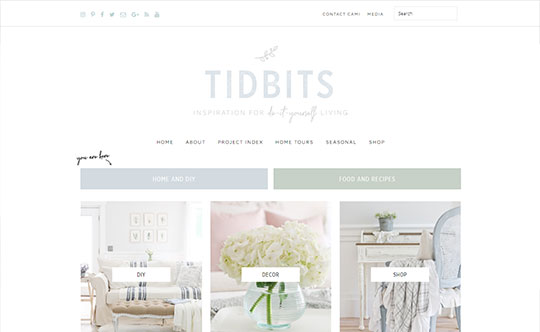 Tidbits - Custom WordPress Development